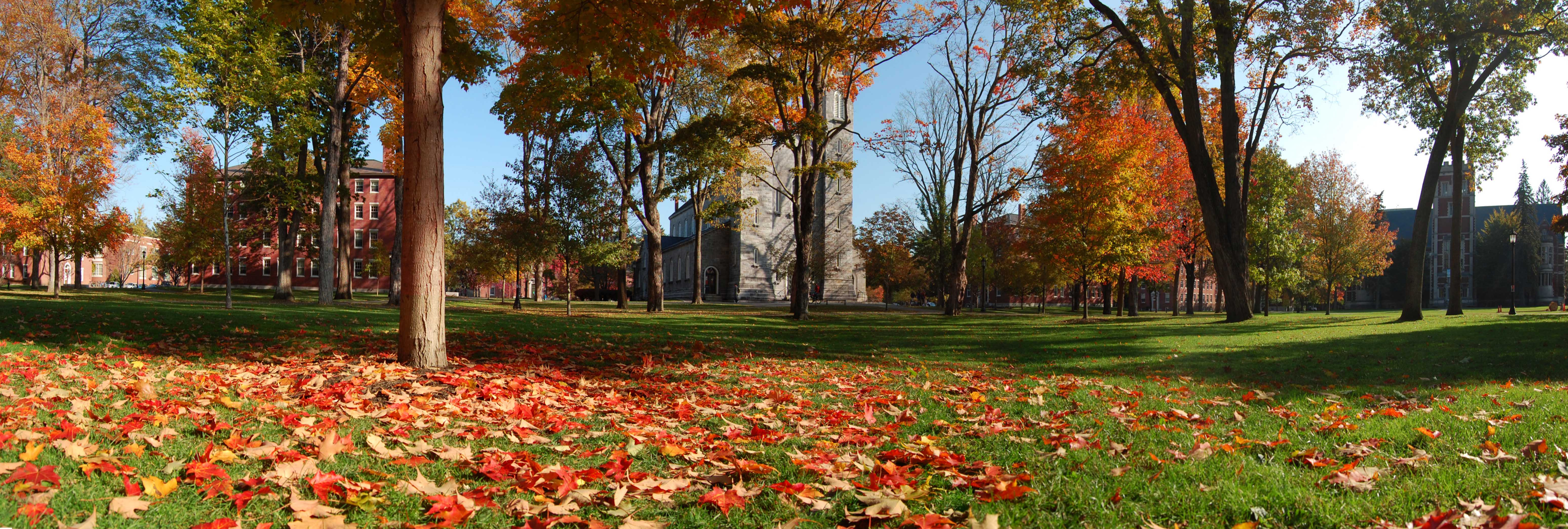 Bowdoin College Quad in the fall. Photo courtesy of Wikimedia Commons.